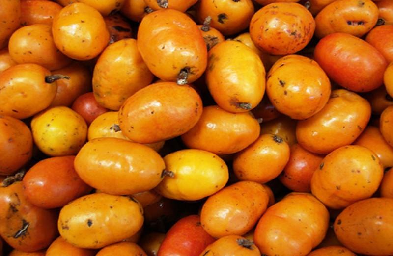 Cajá fruta: 30 benefícios e informação nutricional