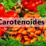 Carotenoides fontes