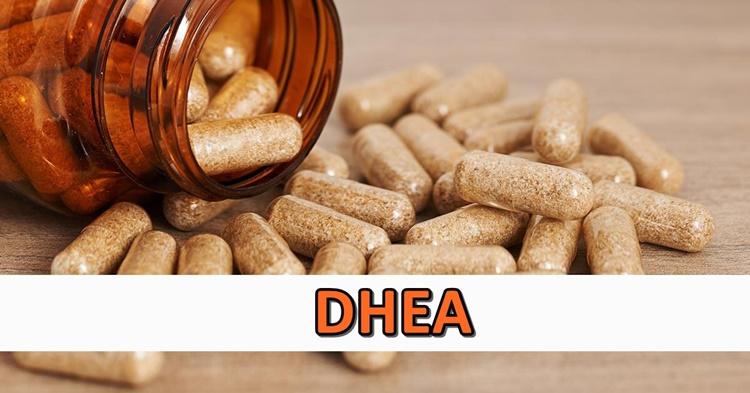 DHEA: o que é, para que serve, alimentos e onde encontrar