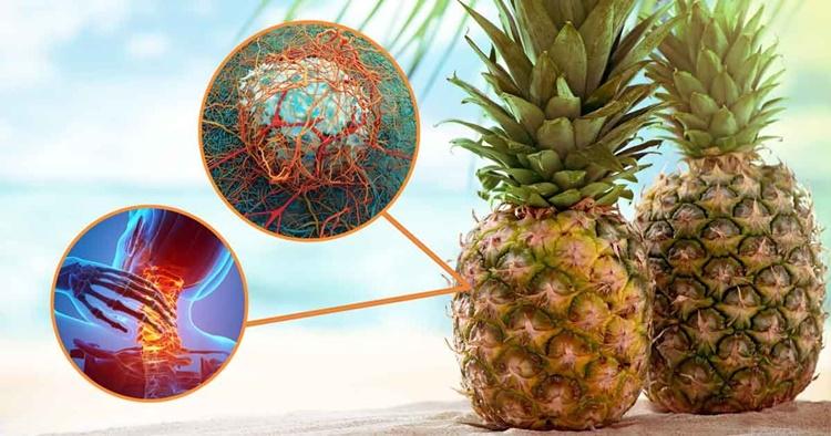 Enzima Proteolíticas