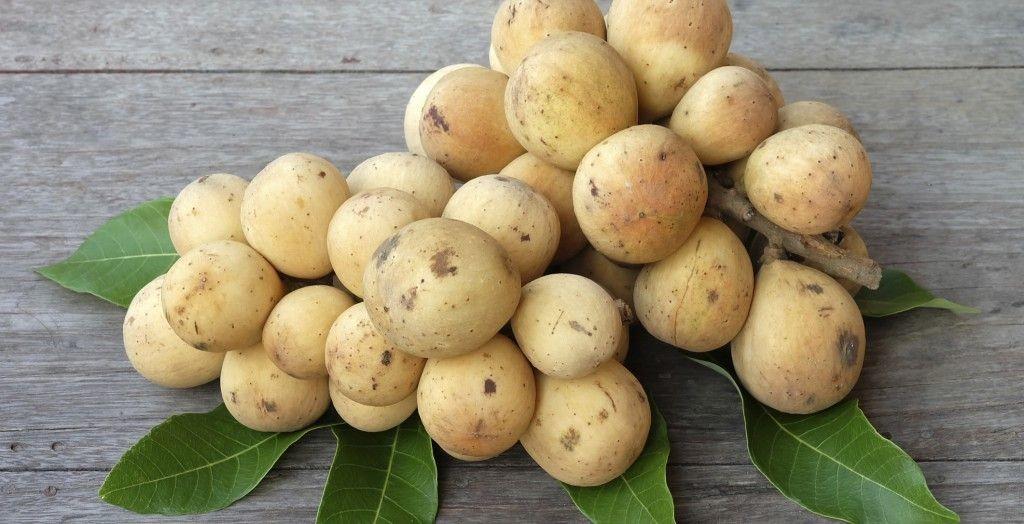 Pitomba fruta: 40 benefícios, informação nutricional e consumo