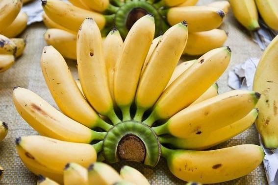 beneficio da banana