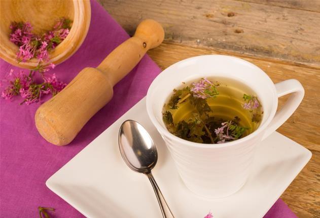 os benefícios do chá de valeriana