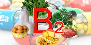 beneficios da vitamina b2