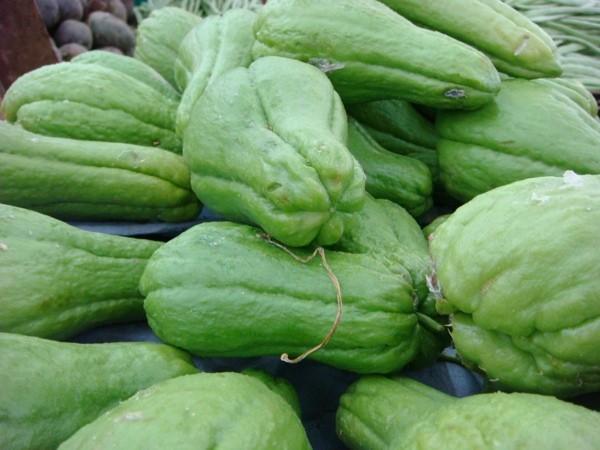 Chuchu: 40 benefícios, informação nutricional e malefícios
