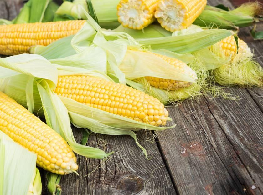 beneficios do milho verde