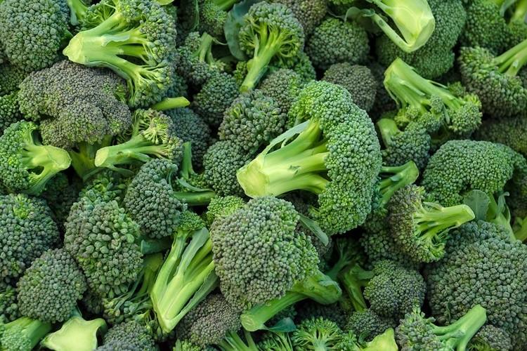 beneficios do brocolis