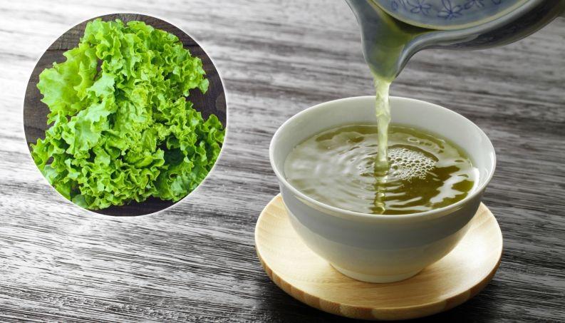 Chá de Alface serve para quê? Veja benefícios e como fazer