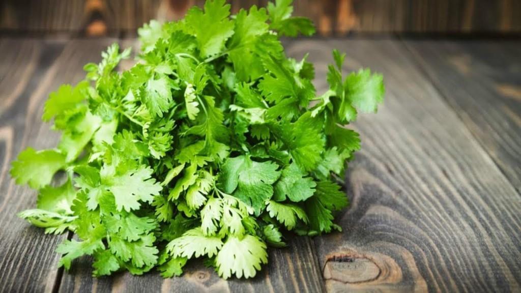 cheiro verde e seus beneficios