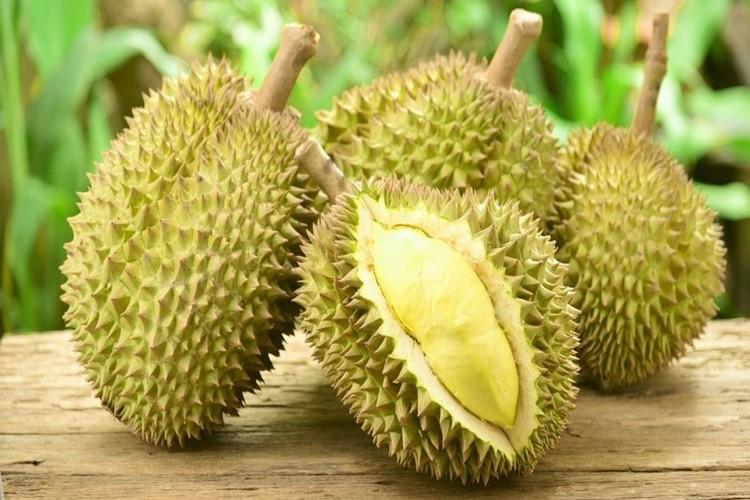 durian beneficios