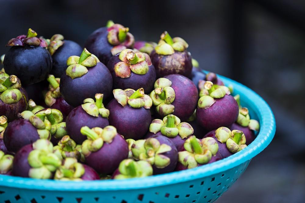 fruta Mangostim