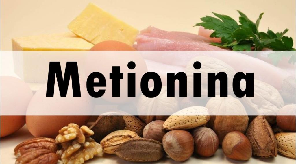Metionina: o que é, para que serve, deficiência e onde encontrar