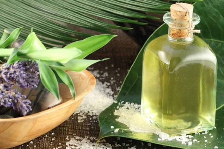 beneficios do oleo de eucalipto