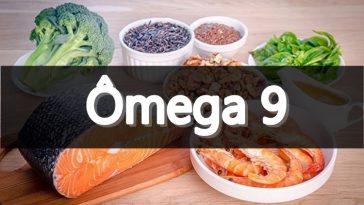 omega 9 fontes