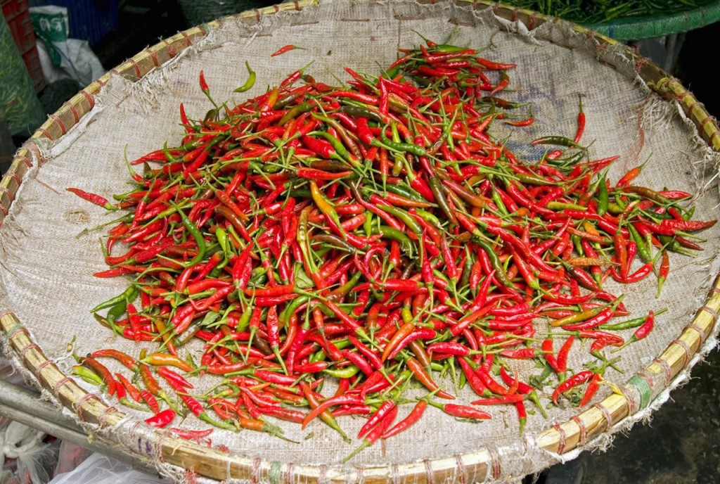 Pimenta Malagueta