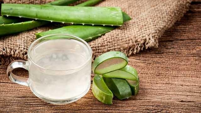 Suco de Aloe Vera é bom para quê? como fazer e para que serve
