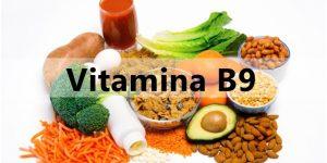 vitamina b9 fontes