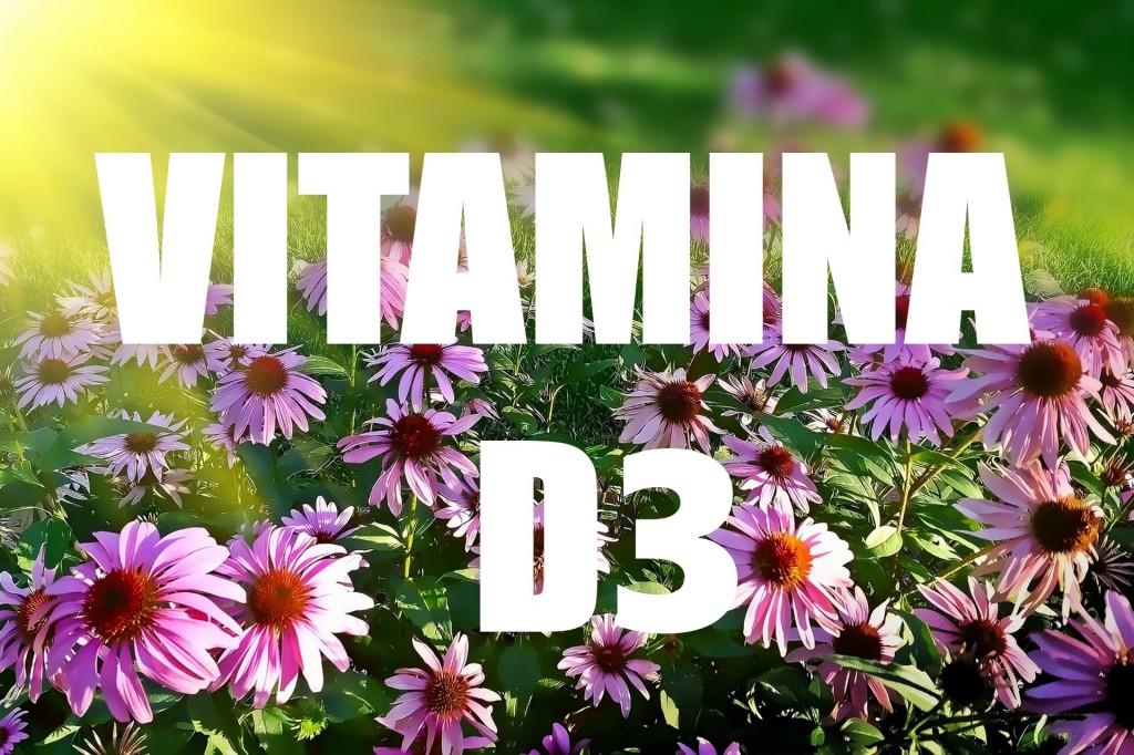 Vitamina D3: para que serve, alimentos, deficiência e como usar