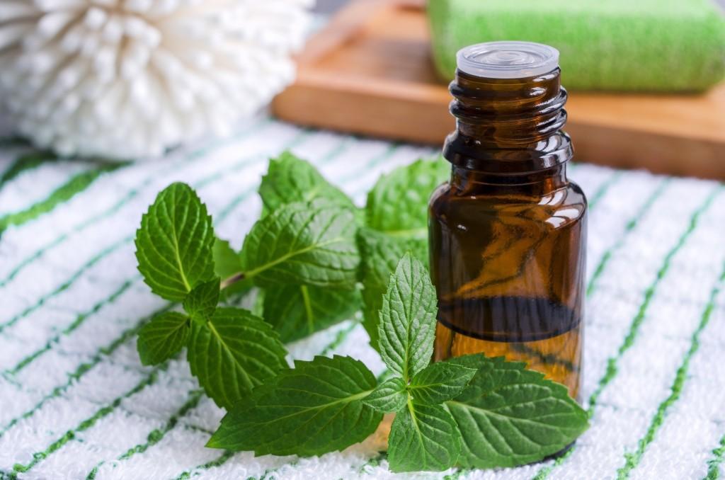 benefícios do óleo de hortelã pimenta