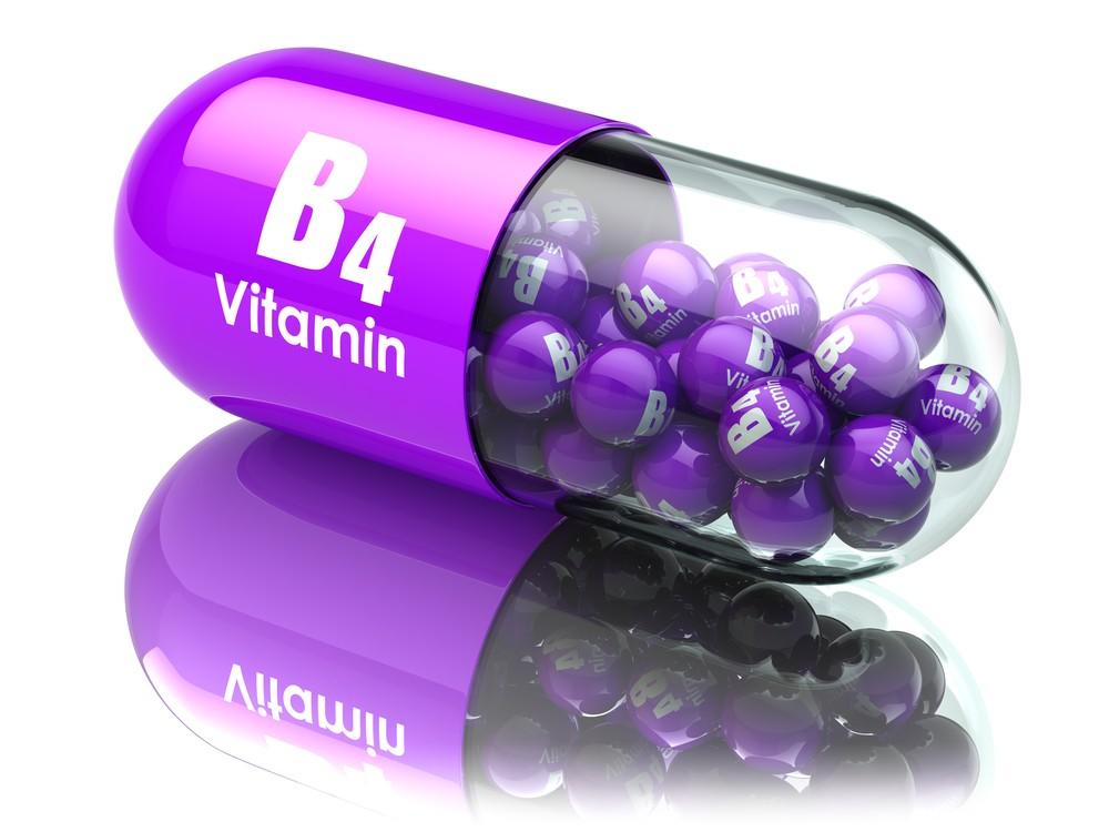 Alimentos Ricos em Vitamina B4