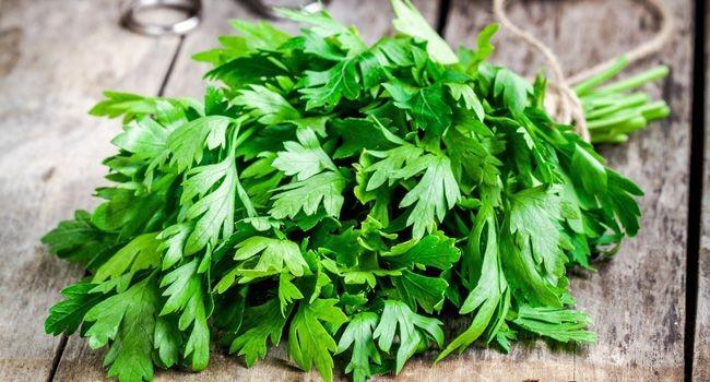Benefícios do Chá de Salsão