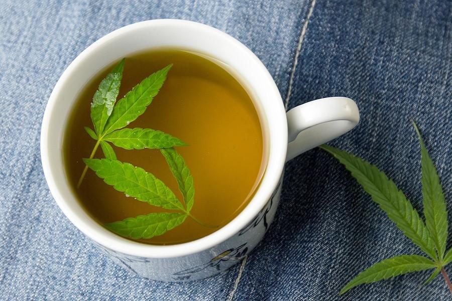 Chá de Cannabis