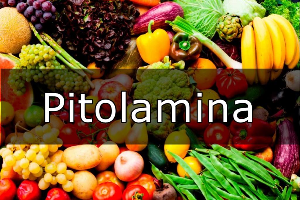 Pitolamina