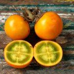 beneficios da naranjilla