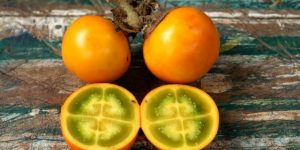 beneficios da naranjilla
