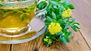 beneficios do cha de rhodiola rosea