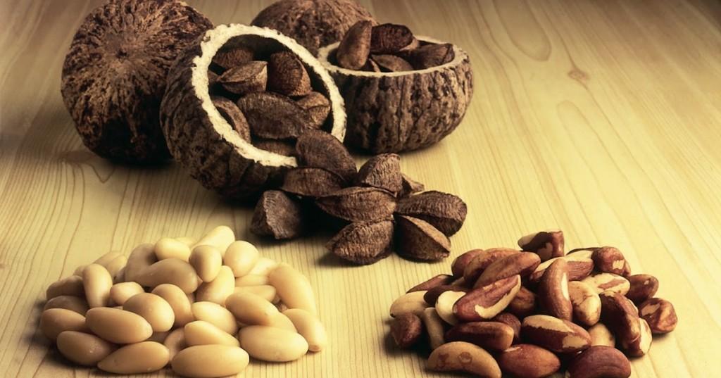 benefícios do óleo de castanha do pará para saúde