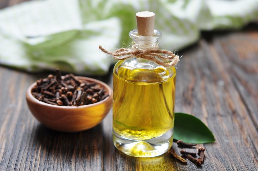 óleo de cravo da índia