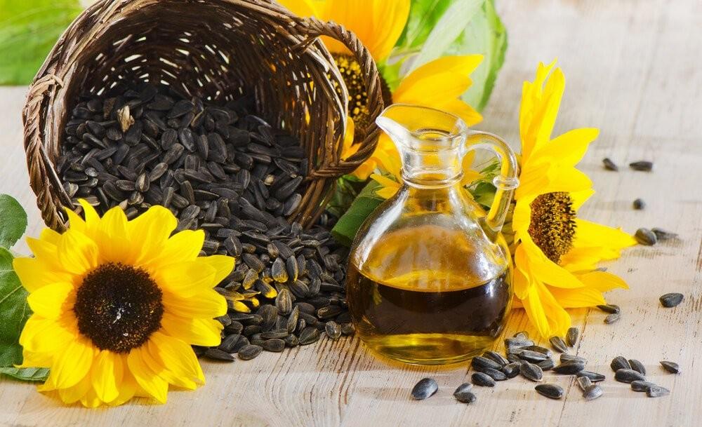 óleo de girassol benefícios
