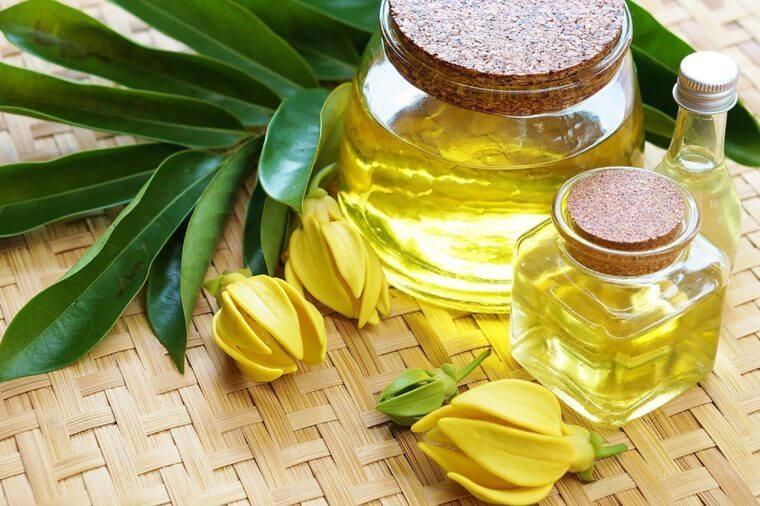 óleo de ylang ylang