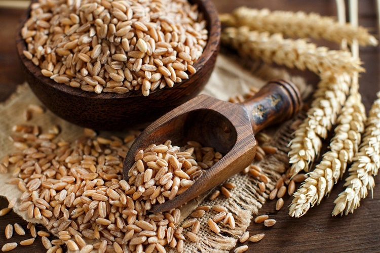 beneficios do trigo em grao