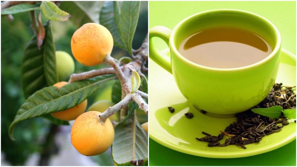 chá da folha de nêspera