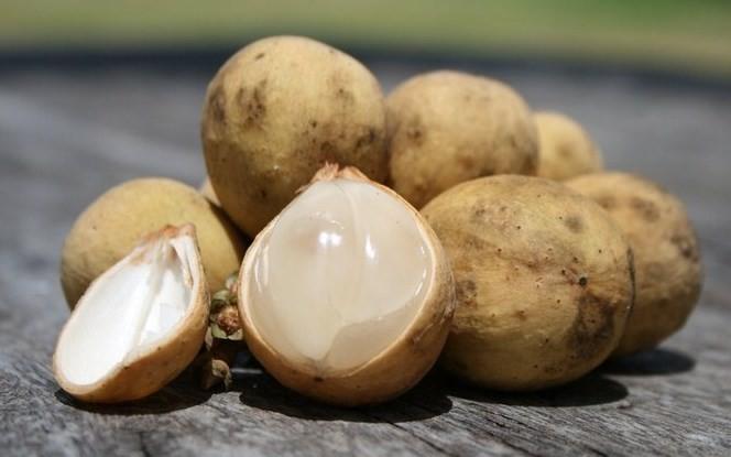 Duku fruta: 15 benefícios, informação nutricional e malefícios