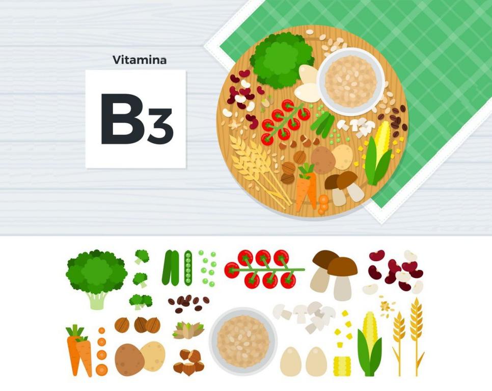 fontes de vitamina b3