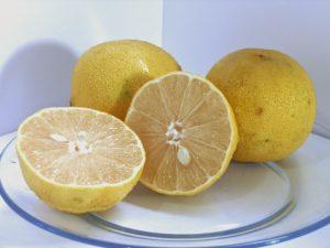 Benefícios do Suco de Lima Doce