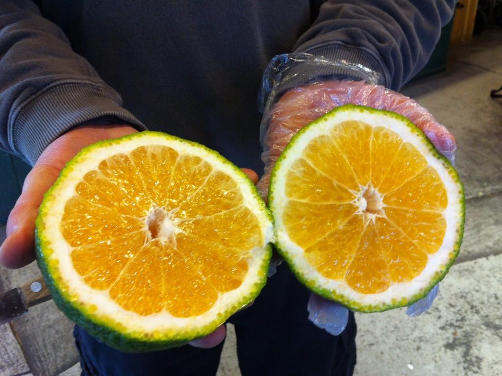 ugli fruta